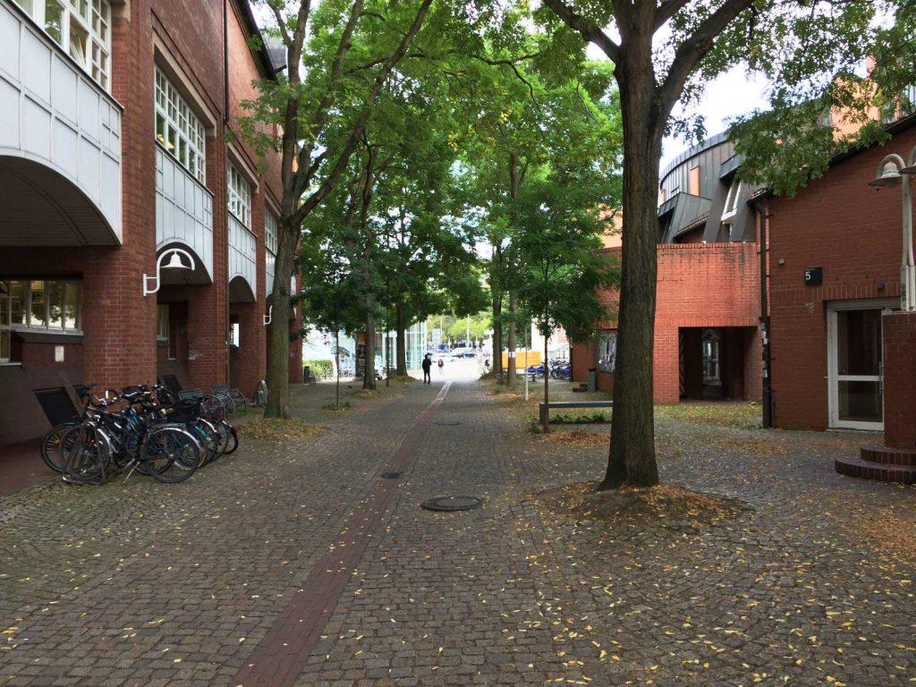 Der Korridor zwischen den Hörsälen 1–3 und der Universitätsbibliothek der Uni Kassel am Holländischen Platz (Foto: Matthias Hauzel)